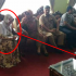 Benarkah Dr Fiera Lovita Melakukan Penistaan Pada Ulama?